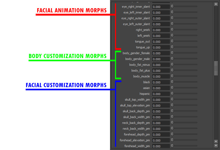 morpTargetCategories.jpg