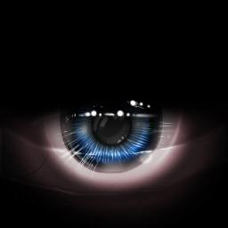 Viper Black eye.jpg